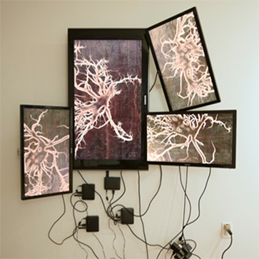"Image of artwork in the Azarian McCullough Art Gallery from the exhibit entitled ""Creative Technology: Art and the Digital Future"""