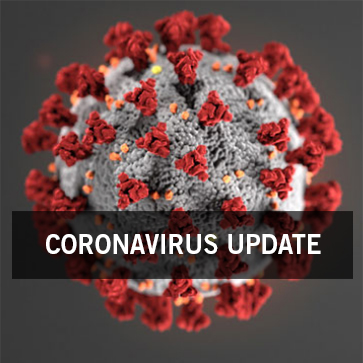 3D illustration of the novel coronavirus