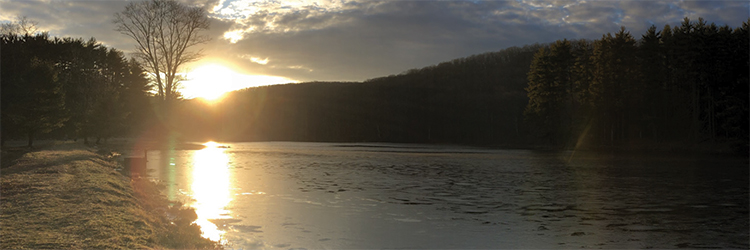 Scenic forest with sunsetting over a lake