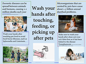 Handwashing tips--cats and dogs in 4 pictures with owners