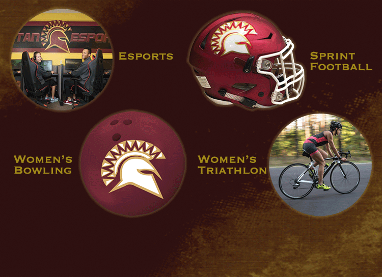 collage image representing four new sports
